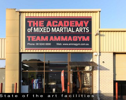 The Academy of Mixed Ammagym